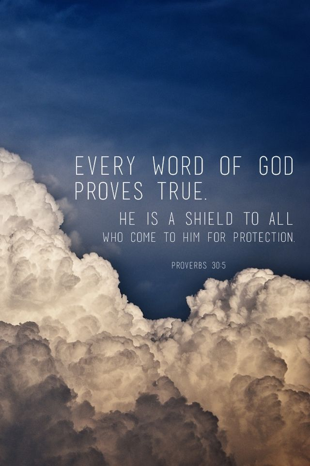 Every word of God proves true. He is a shield to all who come to Him for protection. (Proverbs 30:5)