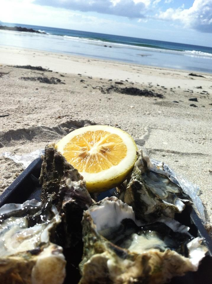 5. Fresh OYSTERS on the beach