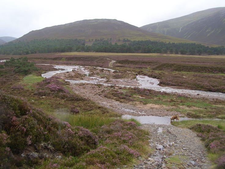 Floodwater cuts through a track at West Quoich Mar Lodge Estate, Scotland #NTSAppeal