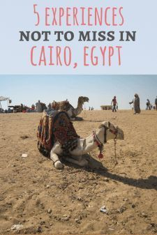 5 Experiences Not to Miss in Cairo, Egypt: A guide from an Egyptian blogger