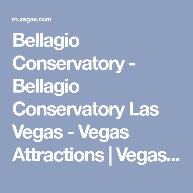 Bellagio Conservatory - Bellagio Conservatory Las Vegas - Vegas Attractions | Vegas.com