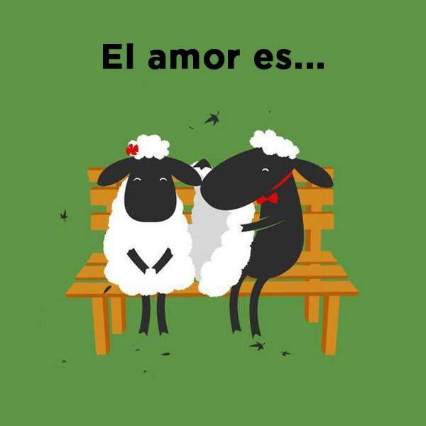#El #Amor es... #Citas. Que dulzura esta imagen!!!