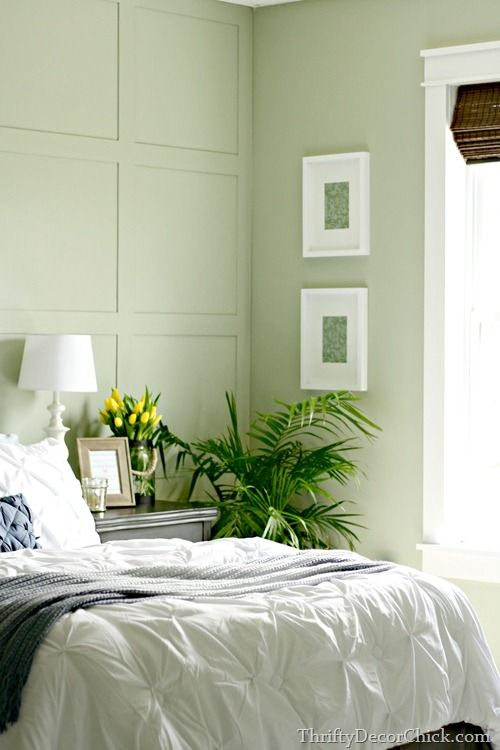 Guest Room Reveal. The 25  best Green bedroom walls ideas on Pinterest   Green