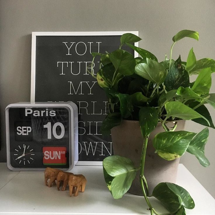 Welcome Sunday! . #myhouse #myhome #interior #interiors #instahome #homedecor #homeinterior #homeinspo #homeinspiration #interiordesign #inredning #sisustus #sisustusinspiraatio #asetelma #homedecor