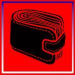 PAVIA: SMARRITO  PORTAFOGLIO CON DOCUMENTI http://terzobinario.blogspot.it/2014/01/pavia-smarrito-portafoglio-con-documenti.html