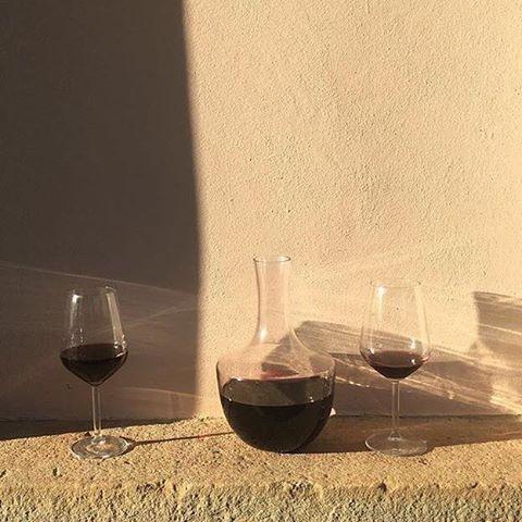 Tuscany calling Villa Lena organic wine in the afternoon sun #villalena…