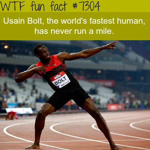 WTF Facts : funny, interesting & weird facts — Usain Bolt never ran a mile - WTF fun fact