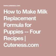 How to Make Milk Replacement Formula for Puppies -- Four Recipes | Cuteness.com