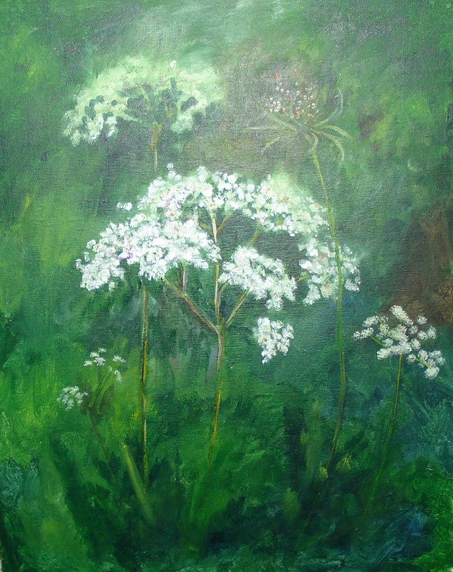 Queen Anne's Lace - acrylic