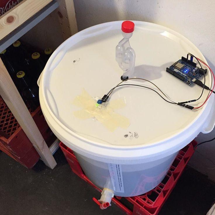 Chiliøl sat til gæring. Ethanol-sensor monteret i låget til overvågning af gæringsprocessen. #esp8266 #iot #brewing #dqbrew by martin.dybdal