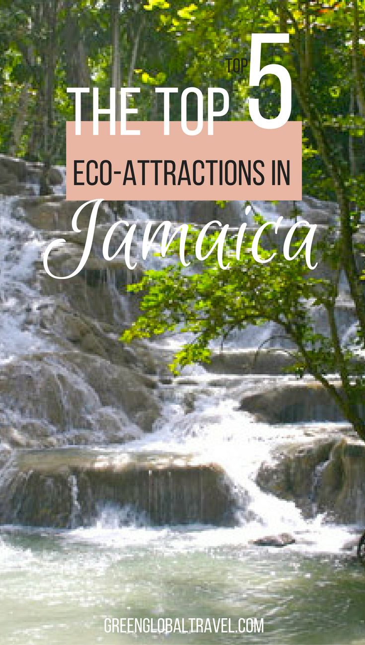 Learn about our top 5 eco-tourism attractions in Jamaica | Ziplining | Forest | Canopy Tour | Beach | Sea Trek Adventure | Martha Brae River | Dunn's River Falls |