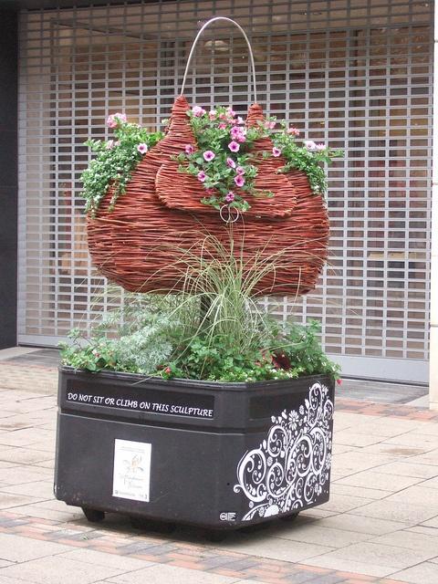 Nottingham in Bloom street art