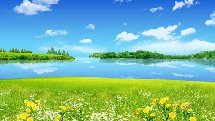 Wonderful Blue Sky Green Grass Wallpaper Free HD Wallpapers