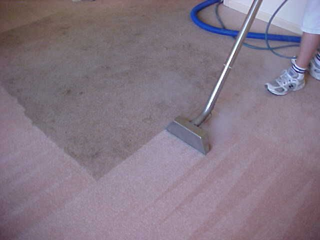 Carpet Cleaners Seattle