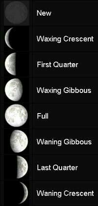 """Understand the moon""""s phases"""