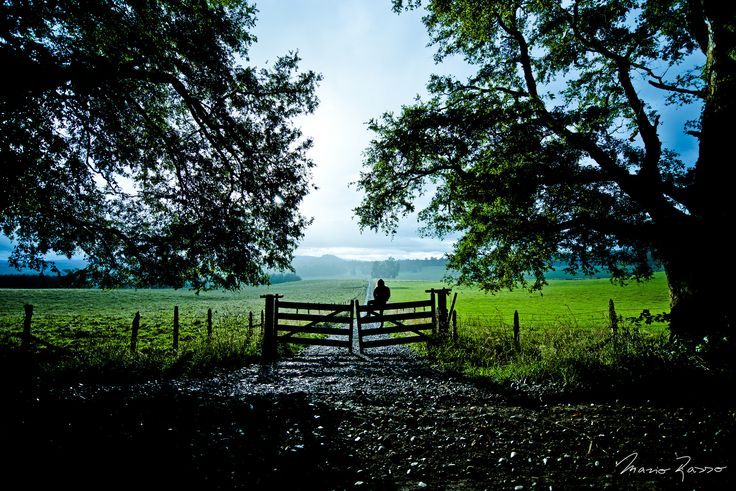 Country / 18:54, After the rain