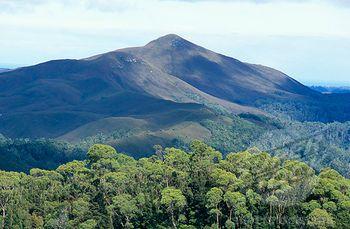 Australian high country mountains pics | ... Photo #1701R-28247, Tarkine Wilderness Area, Tasmania, Australia