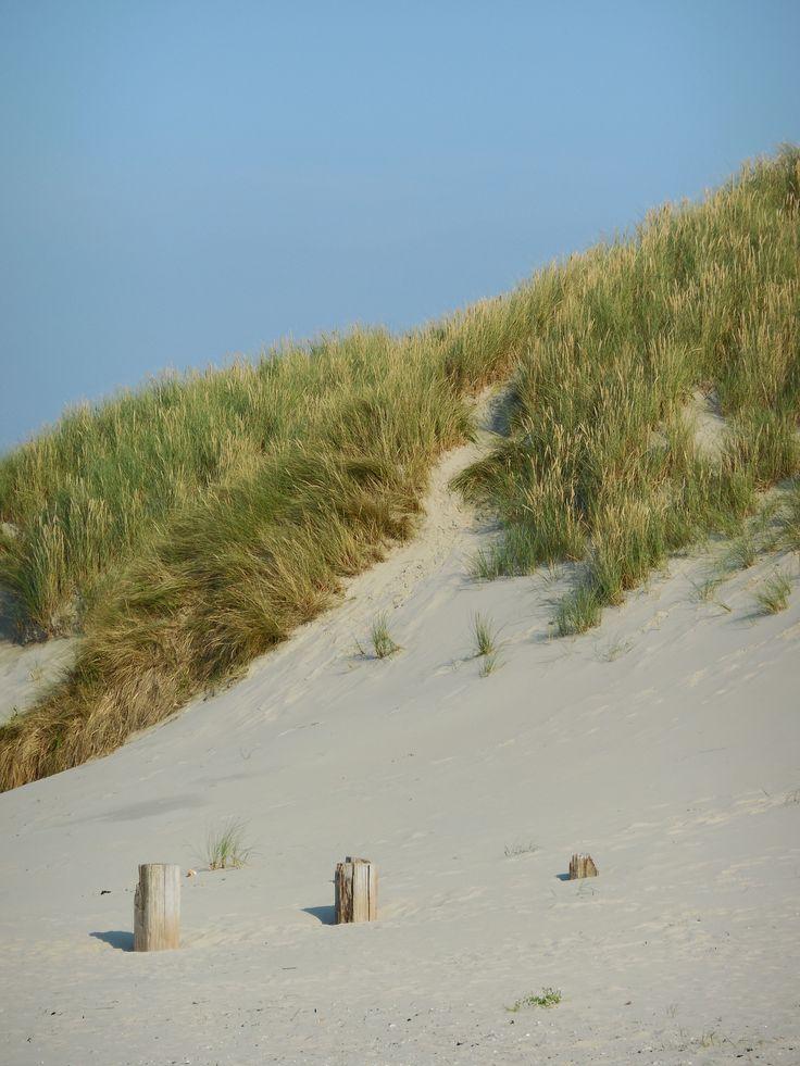 Terschelling Duinen Strand