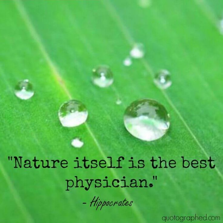 Best Nature Quotes: 17 Best Hippocrates Quotes On Pinterest