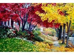 Znalezione obrazy dla zapytania beautiful colourful trees