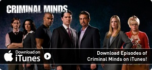 I like Criminal Minds most when they stay away from the personal lives of the characters - I like a story that is taken care of in one episode.