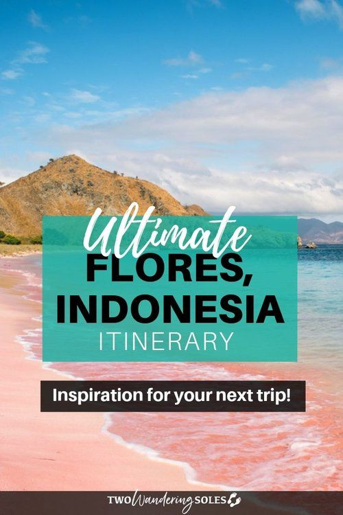 11 Unique Things to Do in Flores, Indonesia