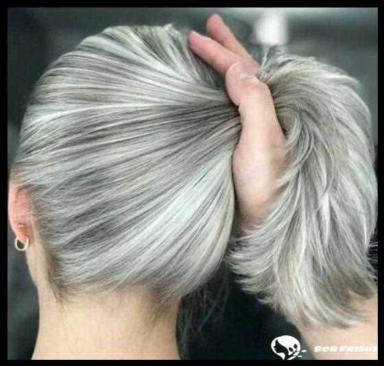 Die Heissesten Brunetten Trends 75 Braune Haarideen Fur 2019 2020 White Hair Highlights Hair Highlights Gray Hair Highlights