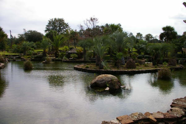 Large pond installation miami florida koi fish ponds for Fish pond installers