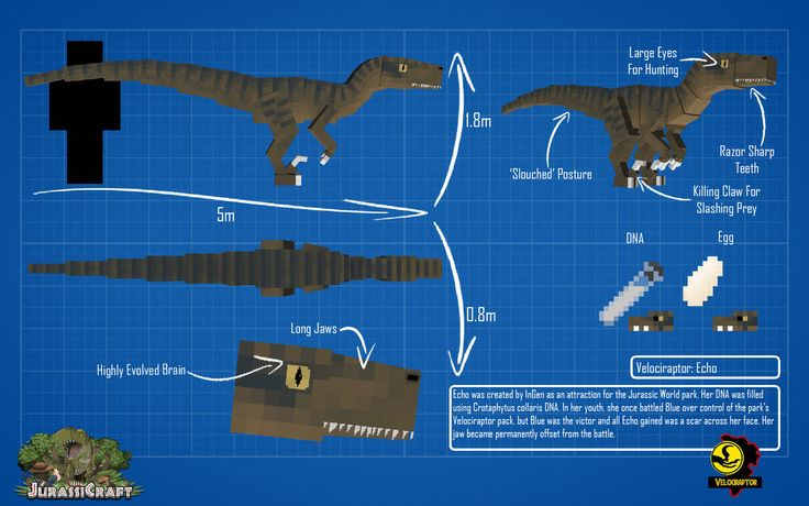 Jurassic Craft Velociraptor Echo