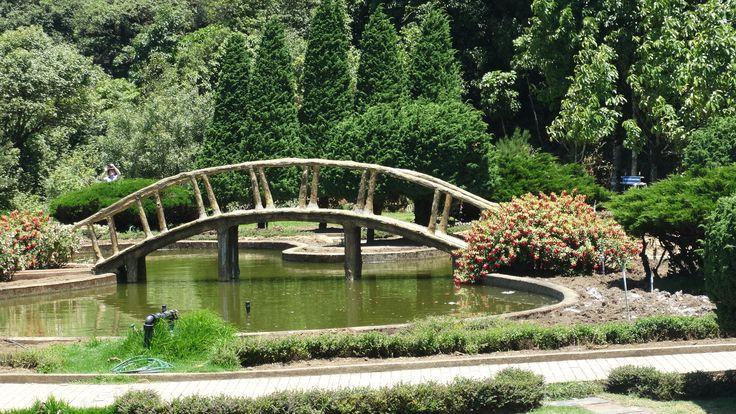 Formal garden to the royal pagodas, Doi Inthanon.