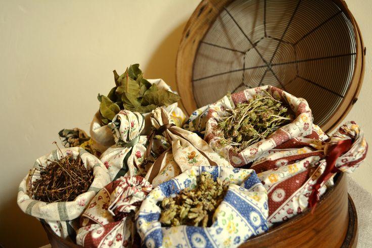 Menina Lima: Saquinhos de ervas aromáticas e infusões - pés de cereja, louro, oregãos e erva pimentinha / Sachets with herbs and infusions - cherry sticks, laurel, oregano and peppery herb