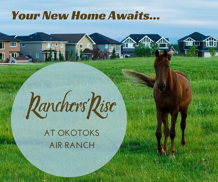 Whether you decide to fly, drive, ride, or walk to one of Alberta's best gems, you're always welcome to experience Okotoks' delightful mixture of history, culture, and innovations first hand. You can have unlimited access to Canada's most gorgeous areas all year round. http://okotoksranchersrise.com/