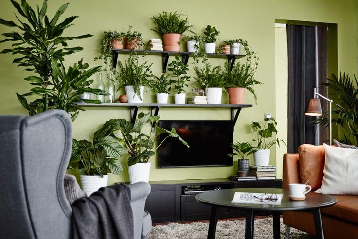 La TV se fond dans le mur végétal