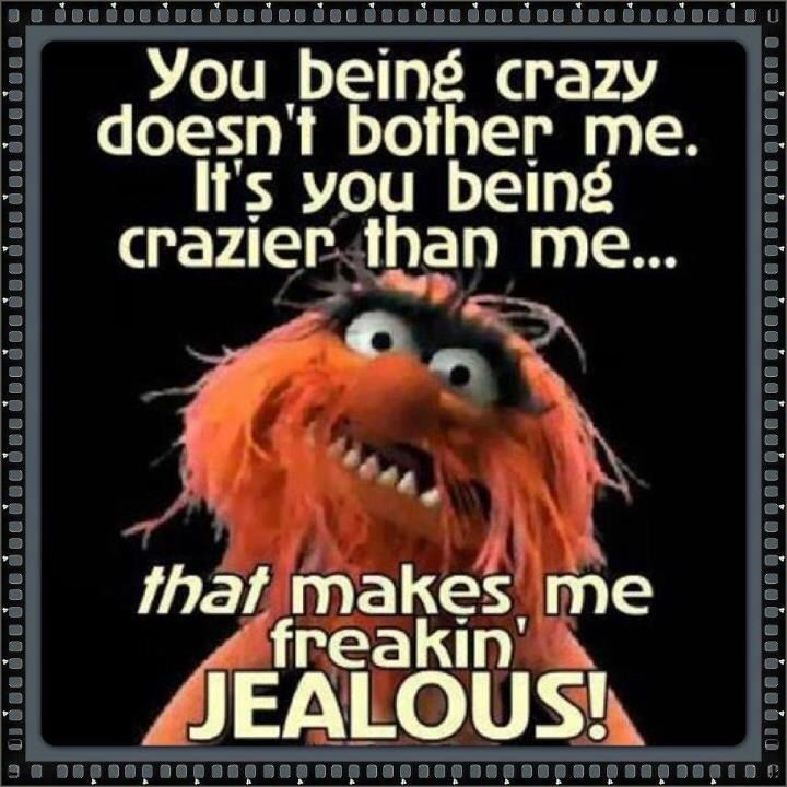 Funny Muppet Meme: 869 Best Images About Muppets On Pinterest