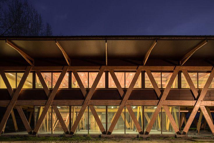 dx-arquitectos-honey-exporter-chile-designboom-02