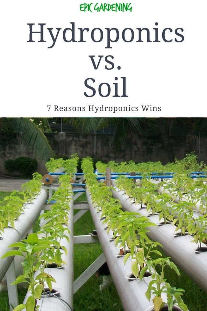 17 migliori immagini su garden to relax group board su for Soil vs hydro