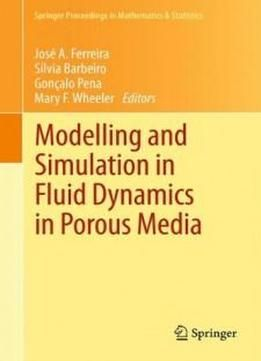 Modelling And Simulation In Fluid Dynamics In Porous Media (springer Proceedings In Mathematics & Statistics) free ebook