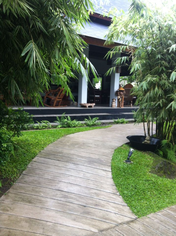 Bamboo in a tropical garden home