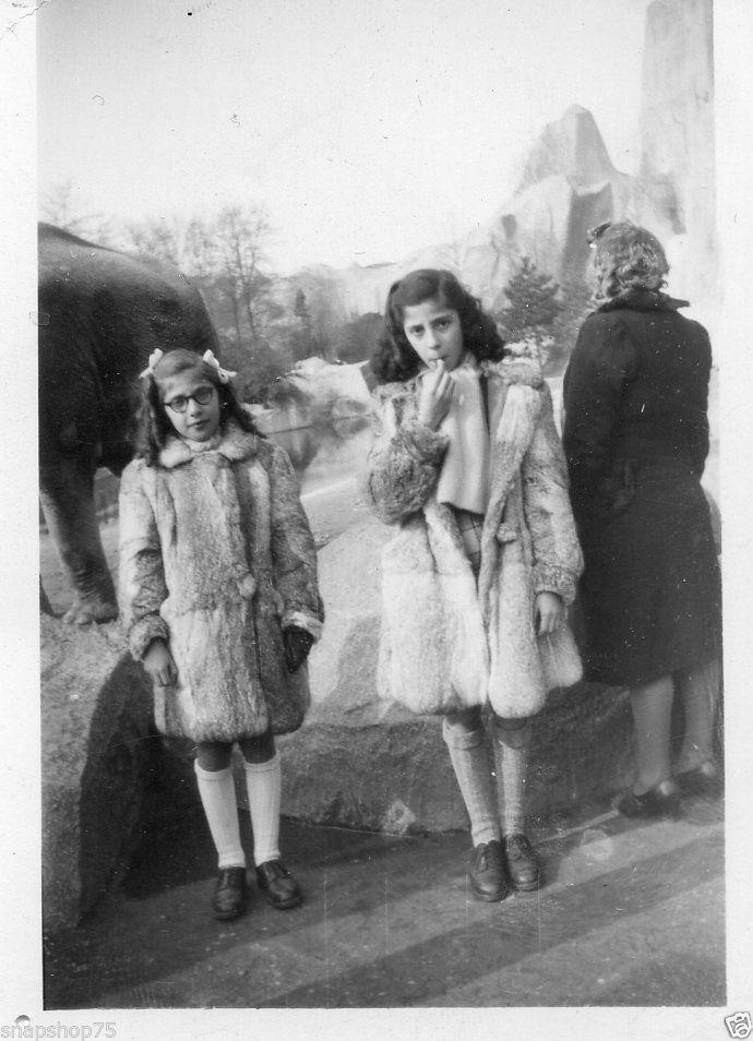 AJ965 Photo anonyme vintage enfant fillette girl mode zoo Vincennes vers 1950
