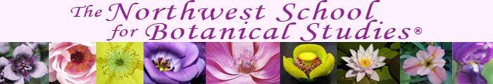 The Northwest School for Botanical Studies ® - Herbalist Training