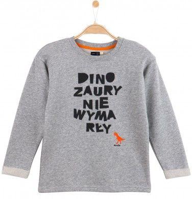 http://endo.pl/dla-chlopca/bluzy/nierozpinane/melanzowa-bluza-dla-chlopca,p-11223