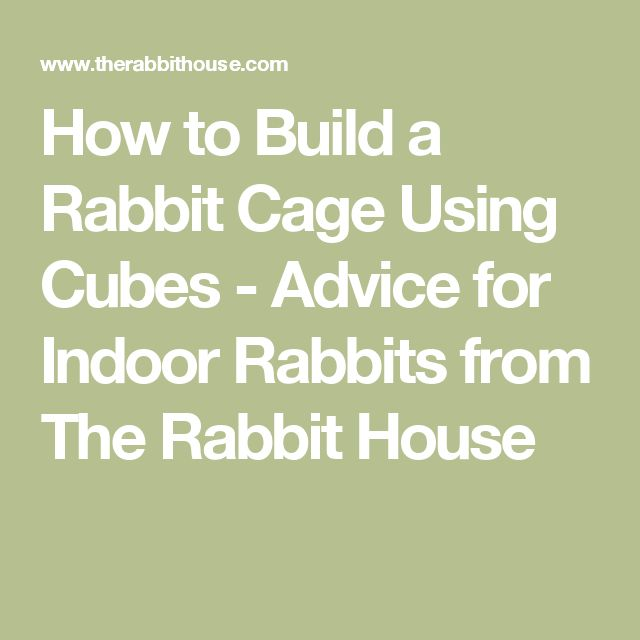 How to Build a Rabbit Cage Using Cubes - Advice for Indoor Rabbits from The Rabbit House