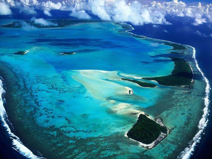 Coral reef in Australia (Rafa koralowa)