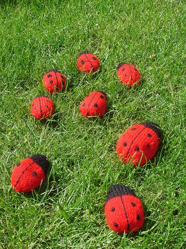Lovely Knitted Ladybird. Would love a (or some) ladybirds! They are my favourite animal! Felted, crocheted or knitted would all be good.