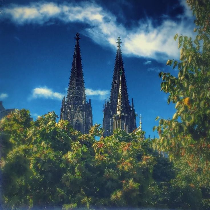 Taken just before the leaves changed #köln #dom #deutschland #cologne #cathedral #germany #autumn