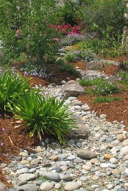 Dry stream bed. This one looks nice and natural.  Good rock size combo and nice curves, width variation and with appropriate boulders and plantings