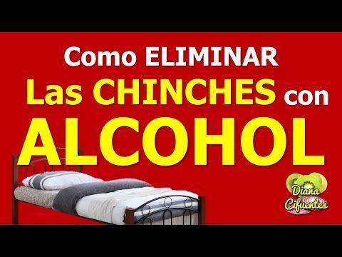 Alcohol Para Las Chinches De Cama Como Eliminar Las Chinches Por Completo Rociando Este Remedio Youtu Como Eliminar Chinches Limpieza De Colchones Chinches