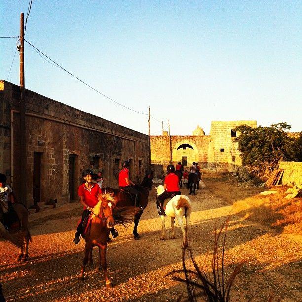 .@Viaggiareinpuglia Official | #marebarocco #mypugliaexperience ci sentiamo un po' in un film west ma siamo ...