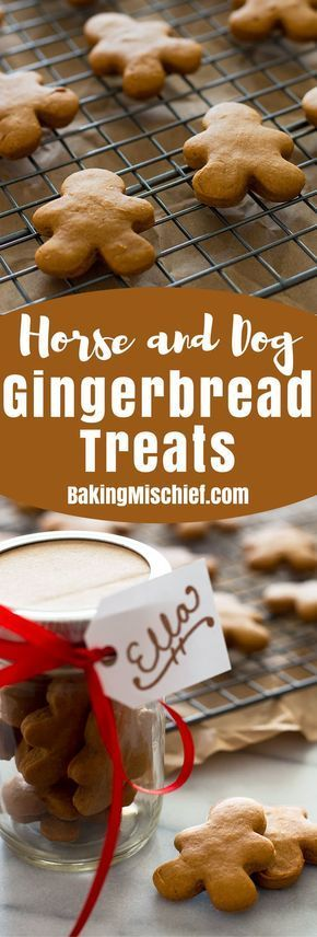Horse and Dog Gingerbread Treats are a simple and easy way to show your pets you care this Christmas! From BakingMischief.com