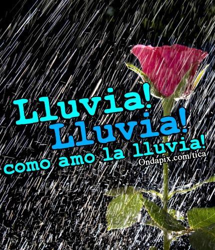 Lluvia lluvia como amo la lluvia